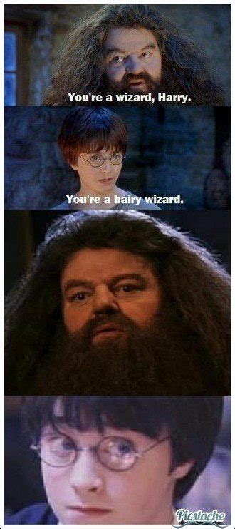 What is the best Harry Potter meme? - Quora