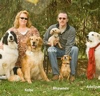 Top Pet Waste Removal Services in Illinois