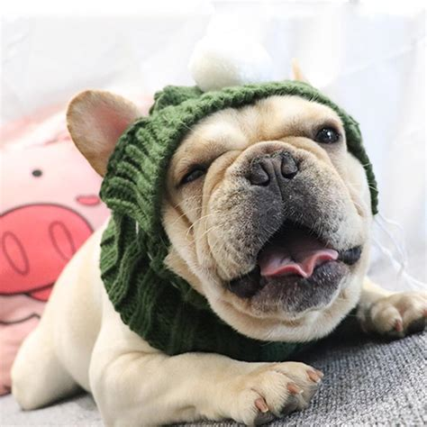 Knitted Snood Hat for French Bulldogs   Pet Beanies Hat