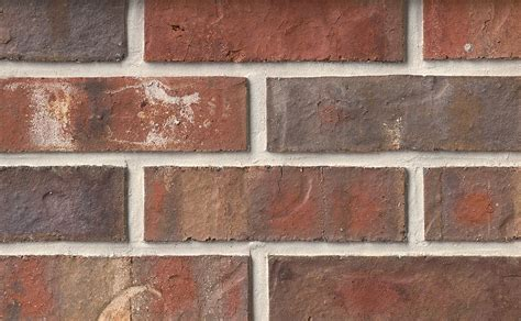 King Size Authintic Brick by Meridian® Brick   CSI ENG